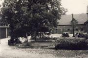 Schnakenberg_Gerda-12