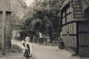 Lueers_Ulrike-5